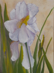 White Iris watercolor and acrylic