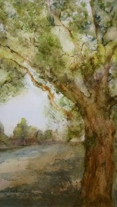 Tree Along Path watercolor